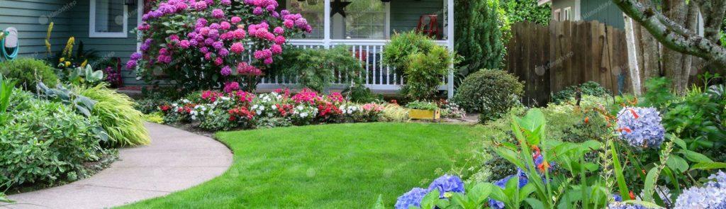 zdjęcie pustego ogrodu ze świeżo skoszoną trawą. Ogród pełny jest rozmaitych kwiatów oraz krzewów. W oddali widać dom.