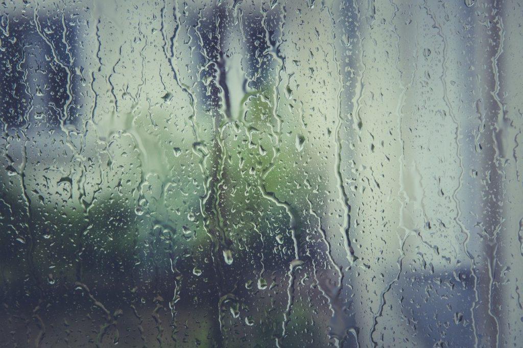 wilgotne okna